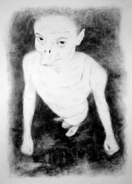 from the series 'Harmless Solitaries', charcoal on paper, 200 x 140 cm, 2000