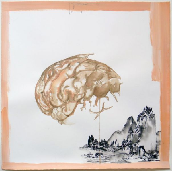 from the series 'Trans-Planas & Trans-Plantas', oil, water colour and graphite on paper, 60 x 60 cm, 2011