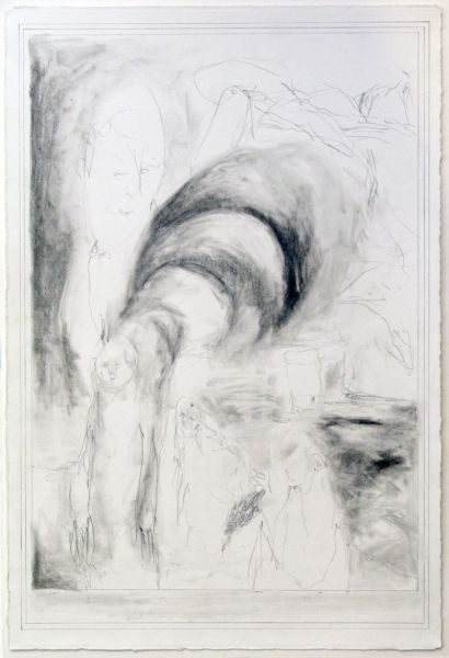 from the series 'The Vertebral & the Invertebrate II', 48 x 32 cm, graphite on paper, 2007