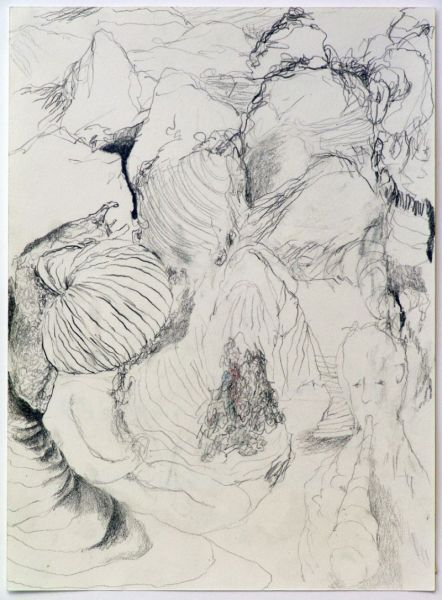 from the series 'The Vertebral & the Invertebrate II', 21 x 30 cm, graphite on paper, 2007