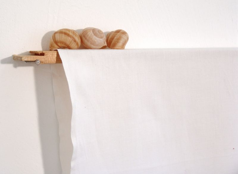 'Drawing with Six Snail Shells and Two Lines' (detail), wood, snail shells, nail and sheet, 2012